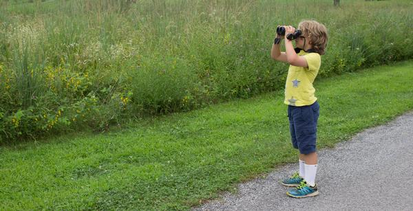 Children and Families: Birding for Beginners at Storm King Art Center