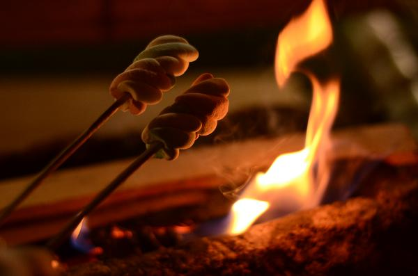 Autumn Campfire & Night Hike at Tenafly Nature Center