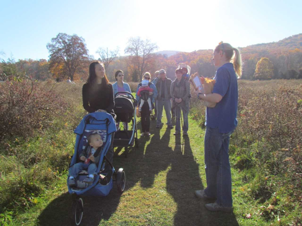 Nature Strollers at Hudson Highlands Nature Museum's Outdoor Discovery Center