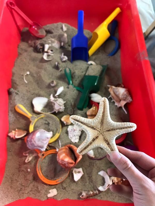 Exploring Play: Let's Explore The Shore! at Westchester Children's Museum