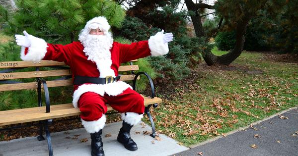 Christmas in the Garden at Queens Botanical Garden