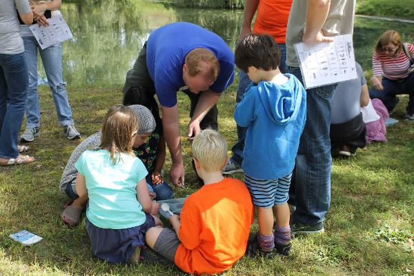 Children & Families: Aquatic Creature Feature at Storm King Art Center