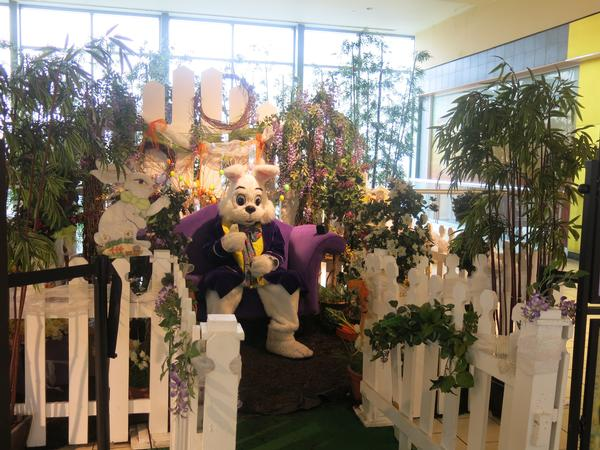 Photos with the Easter Bunny at Queens Center Mall Level 3, JCPenney Wing