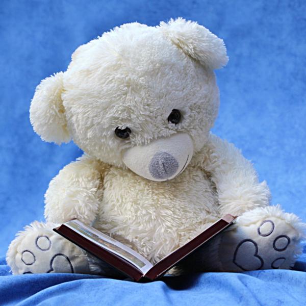 Children's - Teddy Bear Workshop at Syosset Public Library