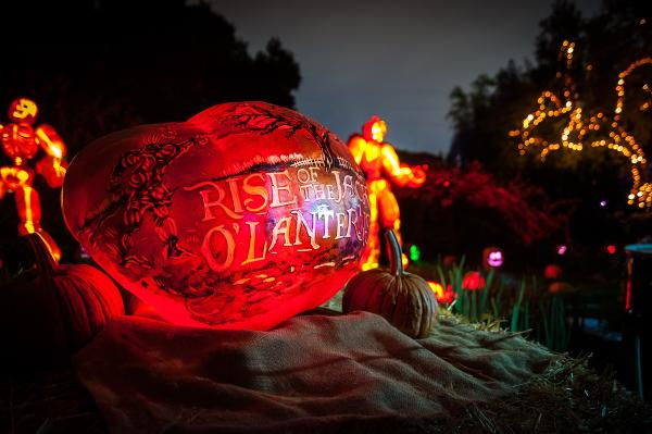 Night of 1,000 Jack O'Lanterns at Governors Island