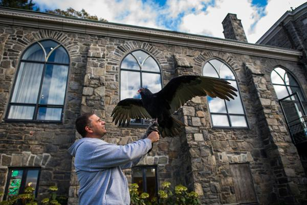 Vulture Culture: A Live Bird Presentation at Wave Hill
