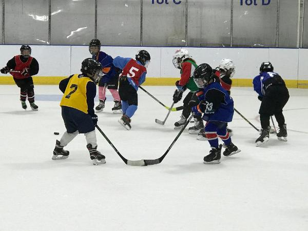 Family Hockey at Port Washington Skating Center