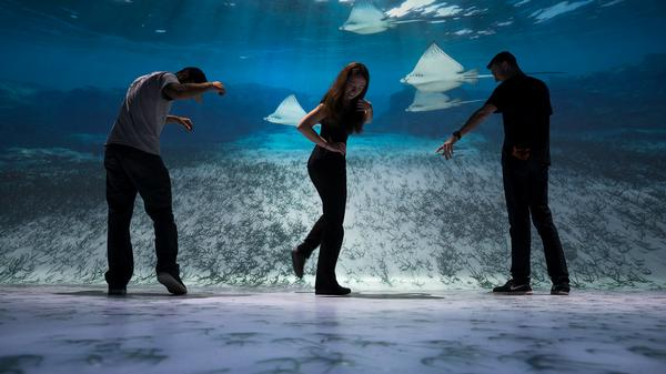 Ocean Odyssey at National Geographic Encounter