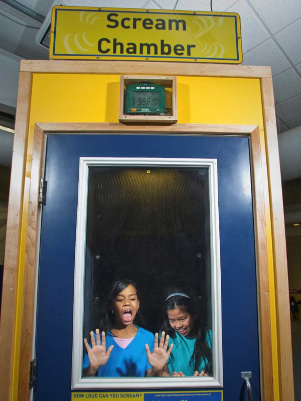 New Traveling Exhibit- Sonic Sensation at Long Island Children's Museum