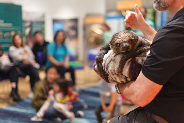 Survival of the Slowest at Brooklyn Children's Museum