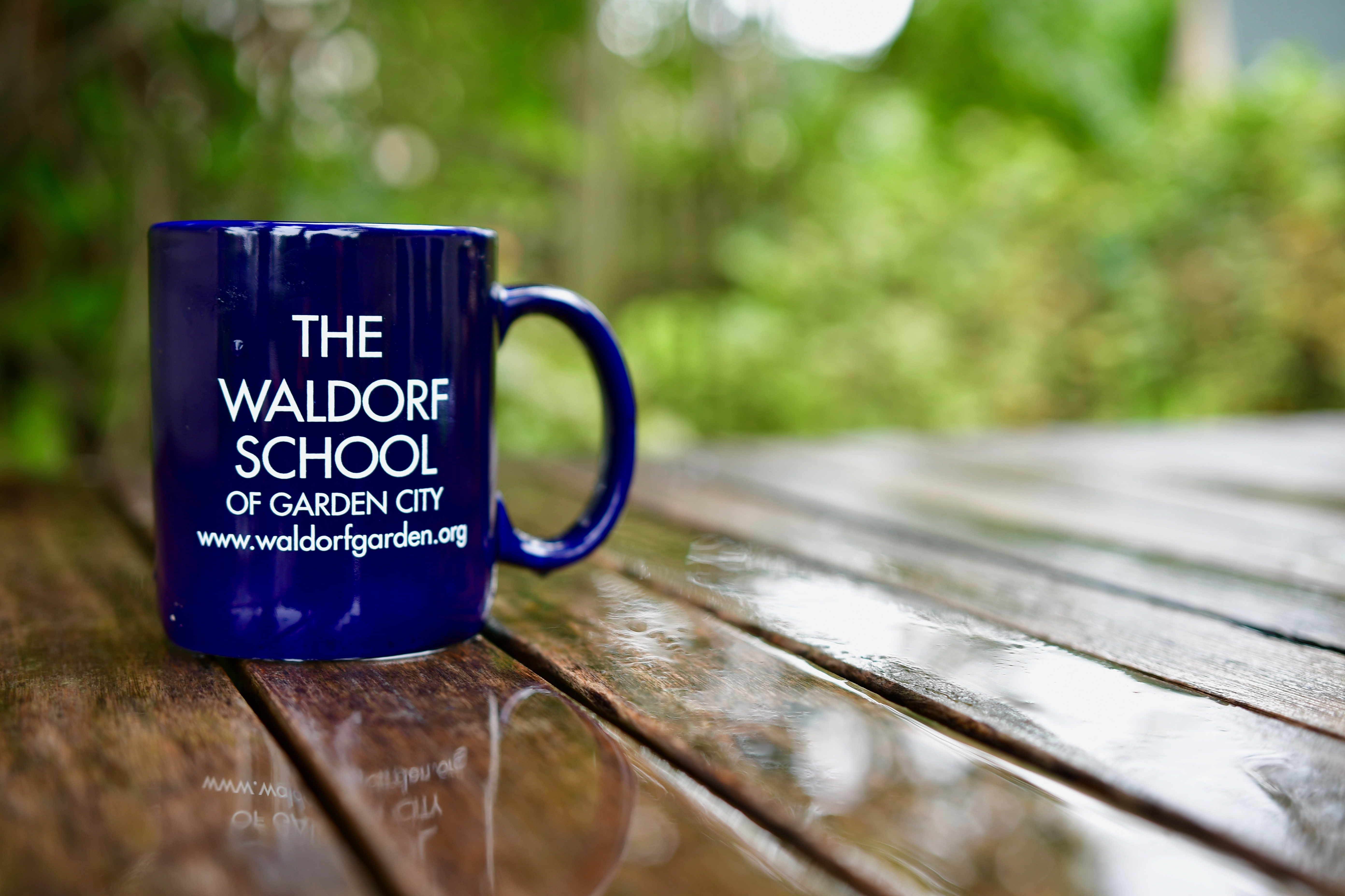 ONLINE Middle & High School Virtual Open House at The Waldorf School of Garden City