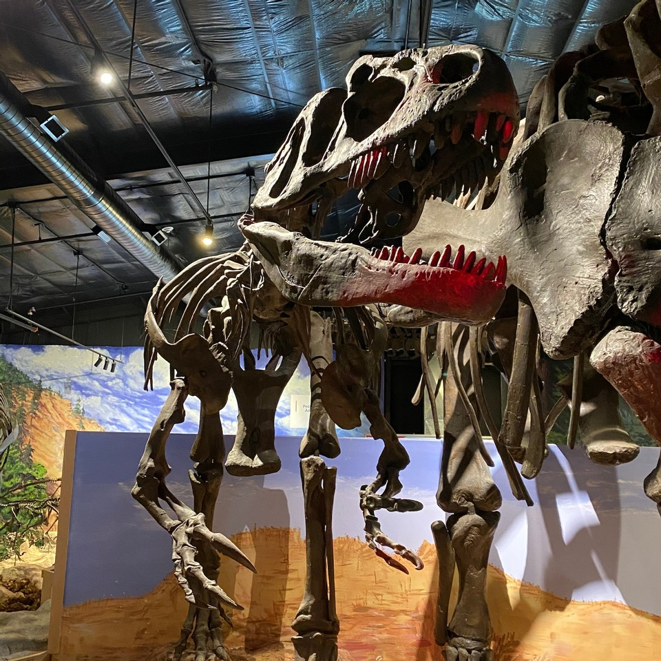 IN PERSON Evening with the Dinos! at Center for Science Teaching and Learning