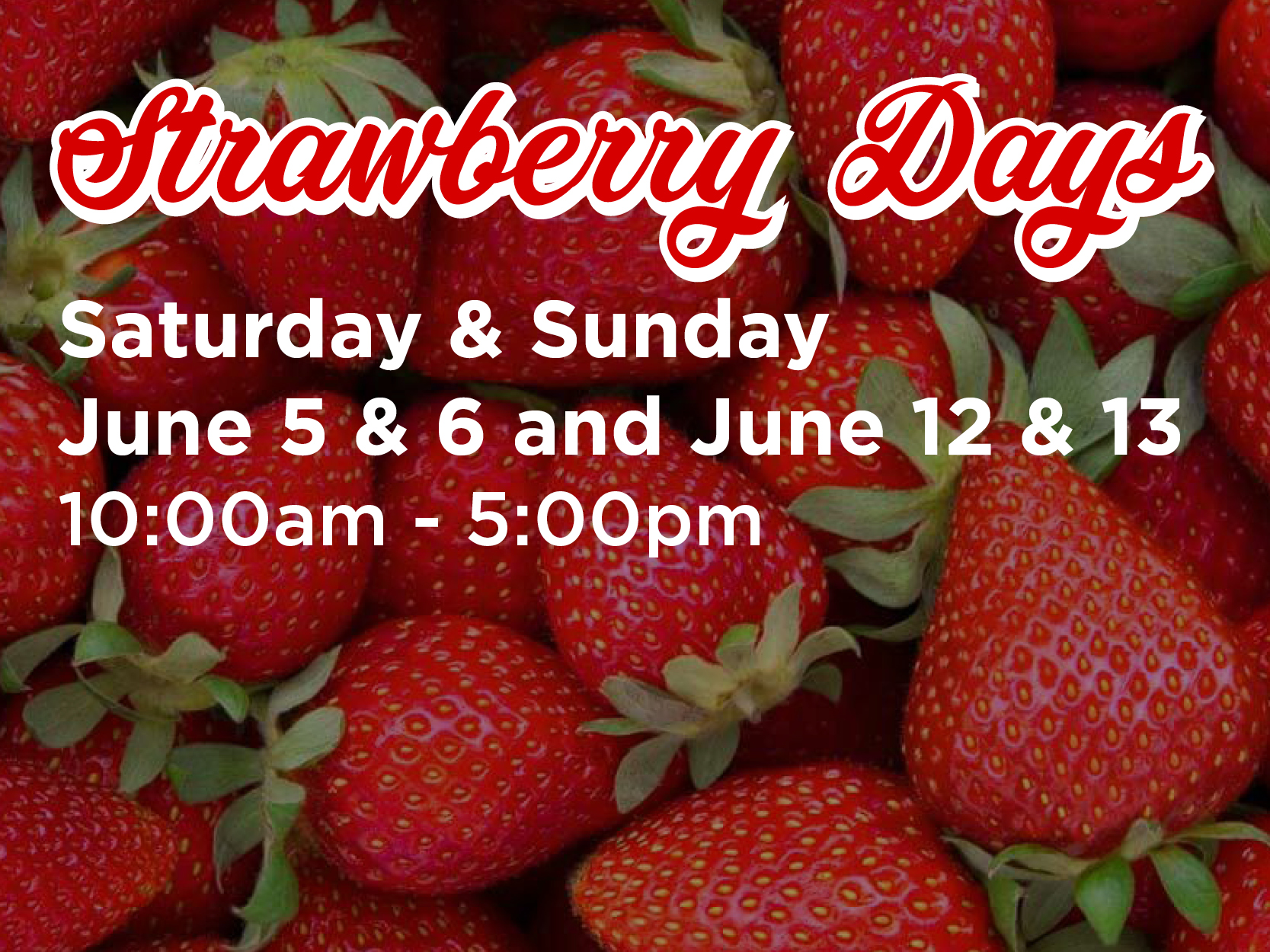 Strawberry Days at The Shoppes at The Shoppes at East Wind