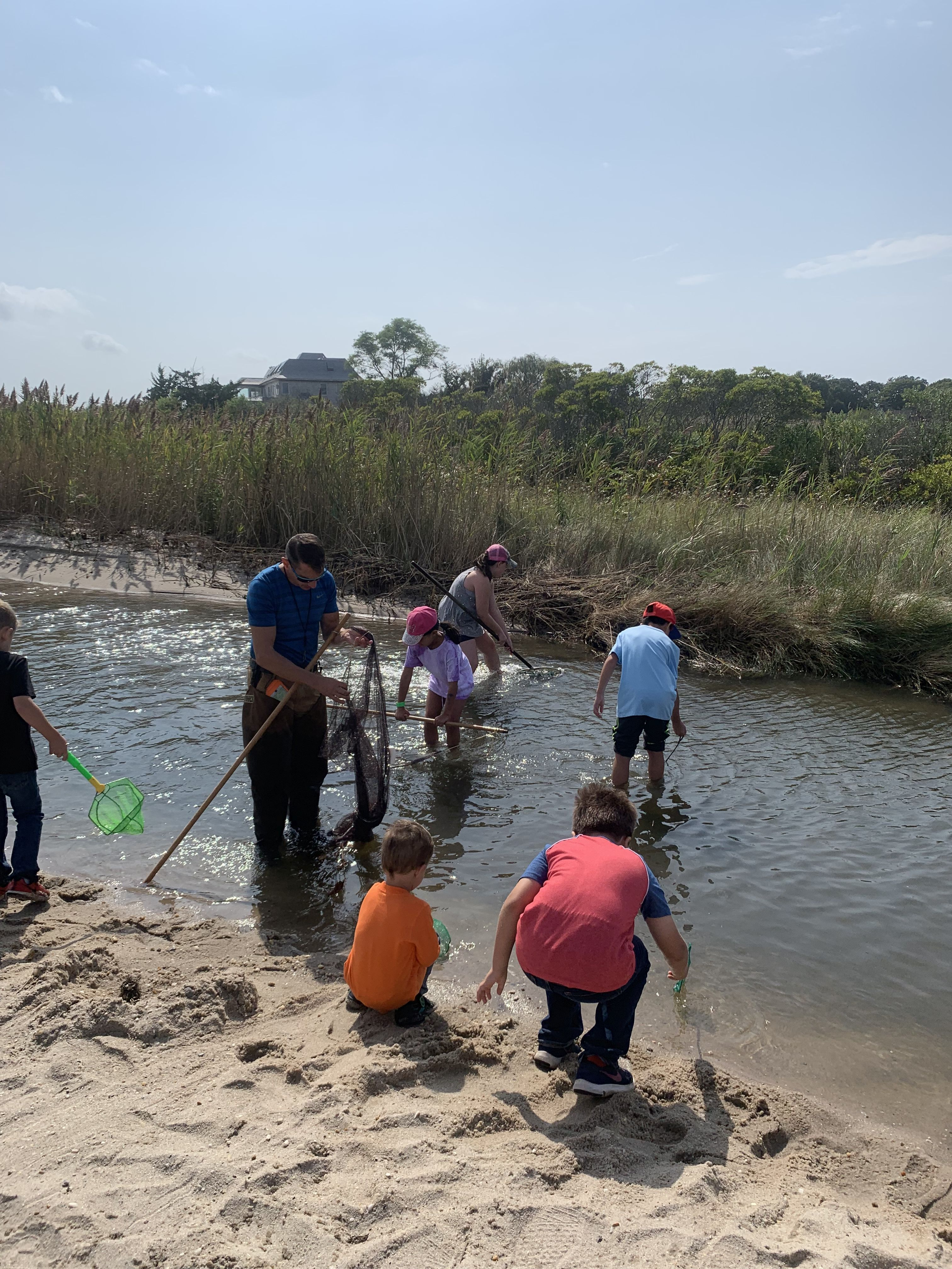 Explore the Great South Bay at Patchogue-Medford Library