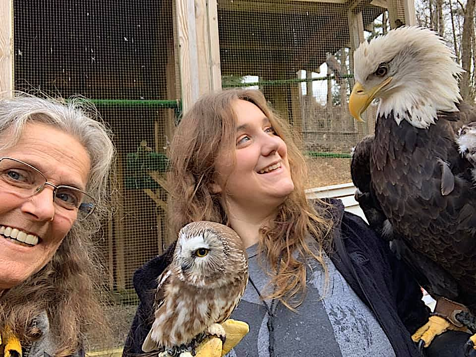 Hawk Watch Celebration with Live Raptors from Christine's Critters at Greenwich Audubon Center