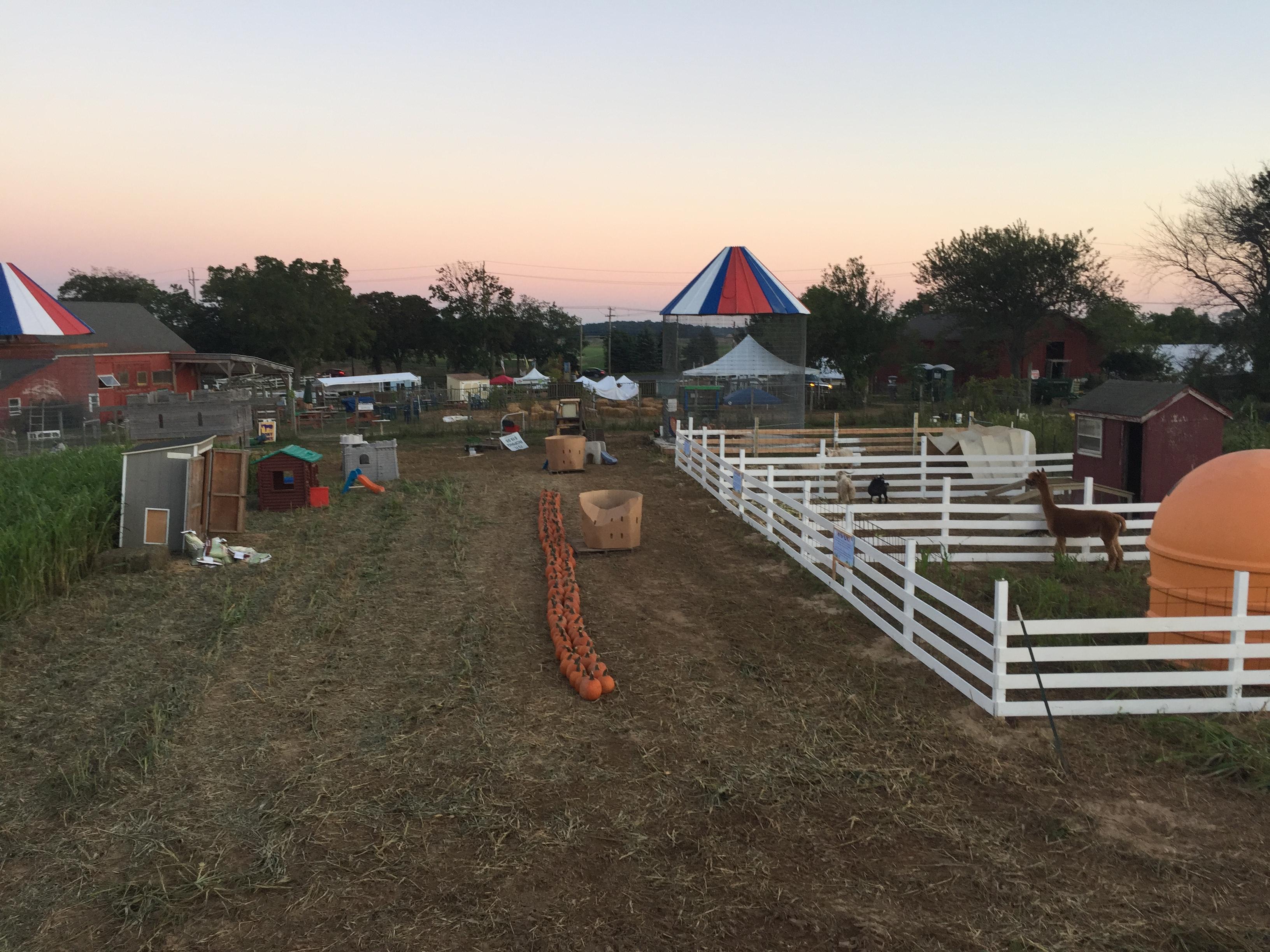Fun Fields Play Area & U-Pick Pumpkins! at Garden of Eve Organic Farm