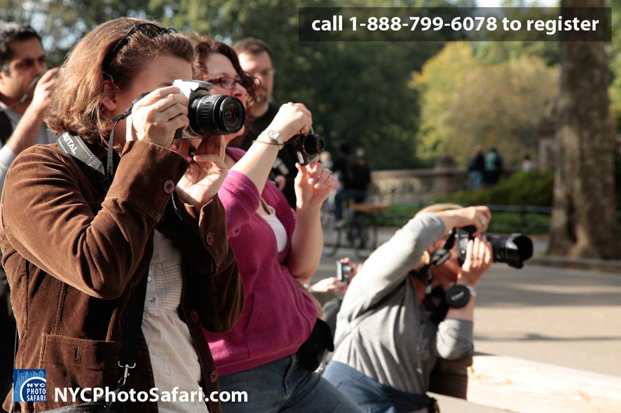 Central Park Photo Safari at Central Park