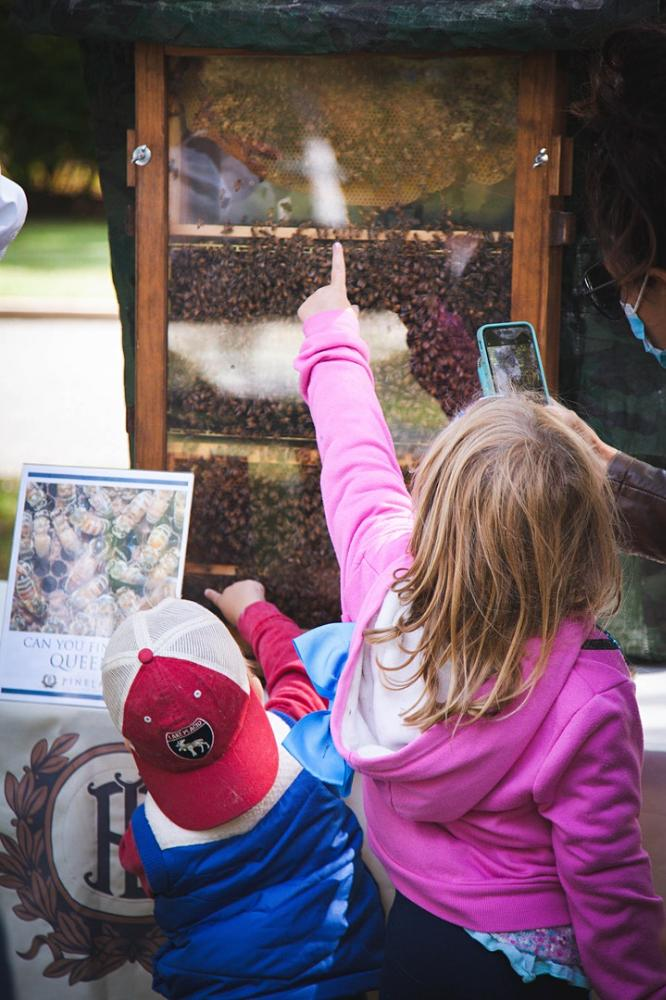 3rd Annual Honey Bee Experience at Pinelawn Memorial Park and Arboretum's Louis Natalie Mall