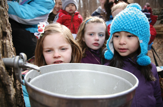maple sugaring benners farm
