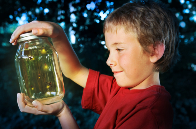 catch fireflies with your kids at night